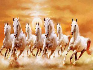 Giải mã giấc mơ thấy con ngựa- mơ thấy ngựa đánh con bao nhiêu
